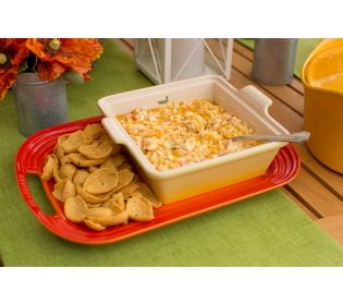 Easy Cheesy Corn Dip by Jill Bauer QVC