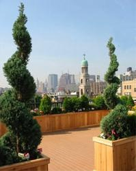 tips to create an urban paradise - check out my gardening blog  http://gardening-blog.org