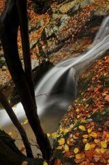 Cascada Ilovita