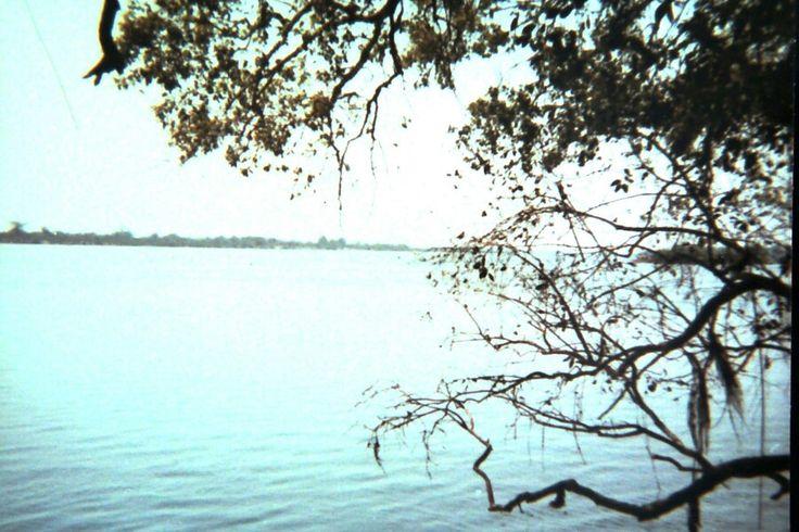 The Zambezi in flood. 1978