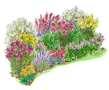 Heat-Loving Garden Plan ~ Create a stylish garden that looks good all summer with this super-simple garden plan.Download the garden plan which includes the names of all the plants with a specific planting diagram.
