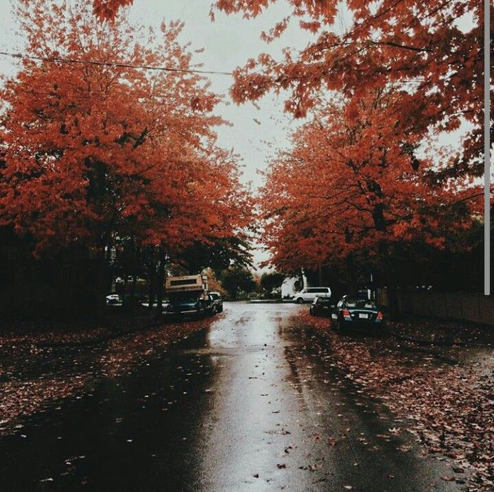 Autumng Asthetics: 104 Best Autumn Is My Favorite Images On Pinterest