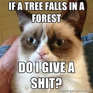 If a tree falls in a forest Do I give a shit? | Grumpy Cat | Meme Generator