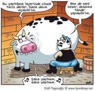 erdil yaşaroğlu | Karikatür Sitesi, En Yeni Karikatürler, Uykusuz Karikatürleri