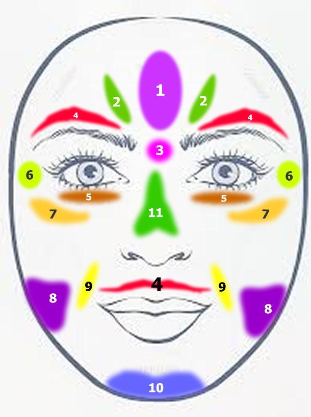 Sabías que tu cara puede ayudarte a saber que estructura de tu cuerpo se encuentra alterada, estas regiones pueden ayudarte a estimular para mantener todo tu cuerpo en equilibrio.