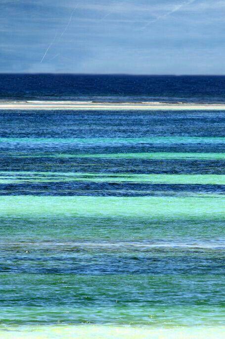 Ocean of colours - Das Farbenmeer © Daniela Hartmann, flickr.com