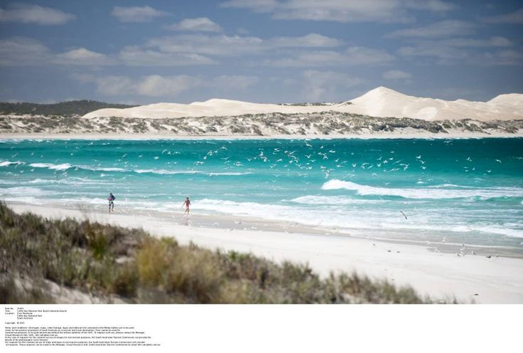 TOP BEACH: Four Eyre Peninsula beaches feature in a new book 101 Best Australian Beaches, including Gunyah Beach (as seen from Almonta Beach) in Coffin Bay National Park. Photograph: South Australian Tourism Commission.