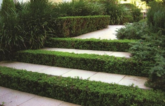 With over 15 years of local landscaping experience, owner Matt McVerry, operates the business with the highest level of personalised service. Working with local Brisbane and Melbourne landscape suppliers to provide top quality service and material at cost price.