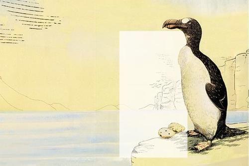 #Scienza: #Il pinguino salentino da  (link: http://ift.tt/1X0VkYA )