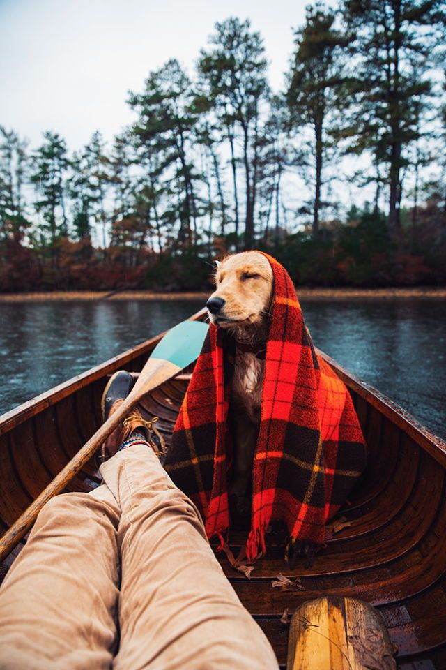 Golden dreams, red blanket, boat, staying dry.