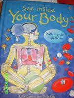 Sergi, todos los años y en repetidas ocasiones decide conocer un poco más sobre el cuerpo humano.Este trimestre que acaba de terminar,lo ex...