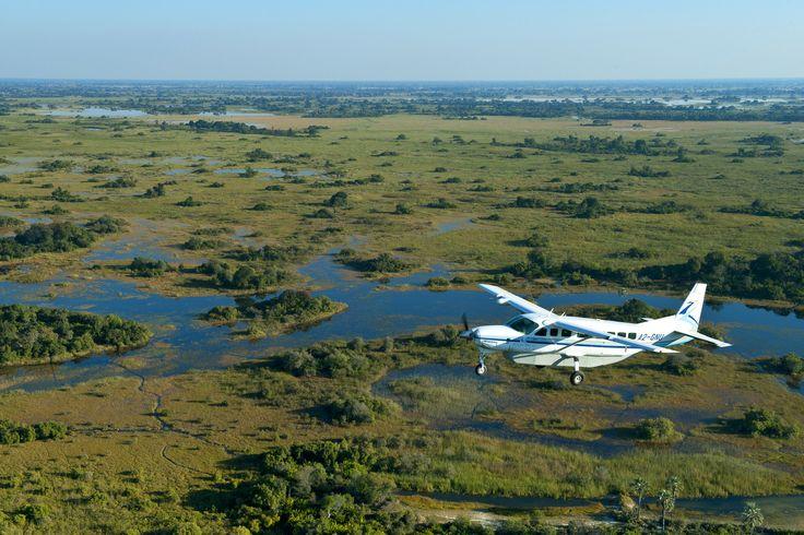 Bush flying at its best - Okavango Delta