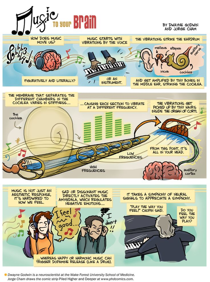 How Music Affects The Brain - Audiolicious.tv#Repin By:Pinterest++ for iPad#
