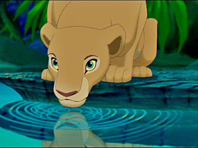 48 best a lion king images on pinterest
