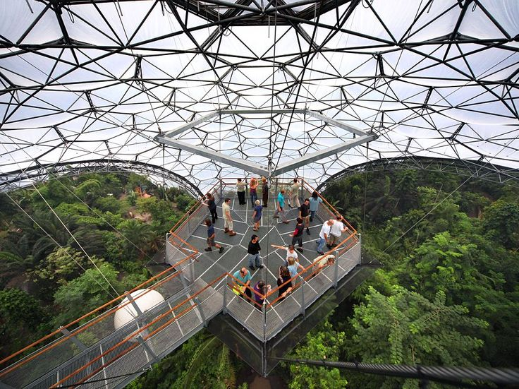 the eden project | Picture of visitors to the Rainforest Biome, Eden Project, England