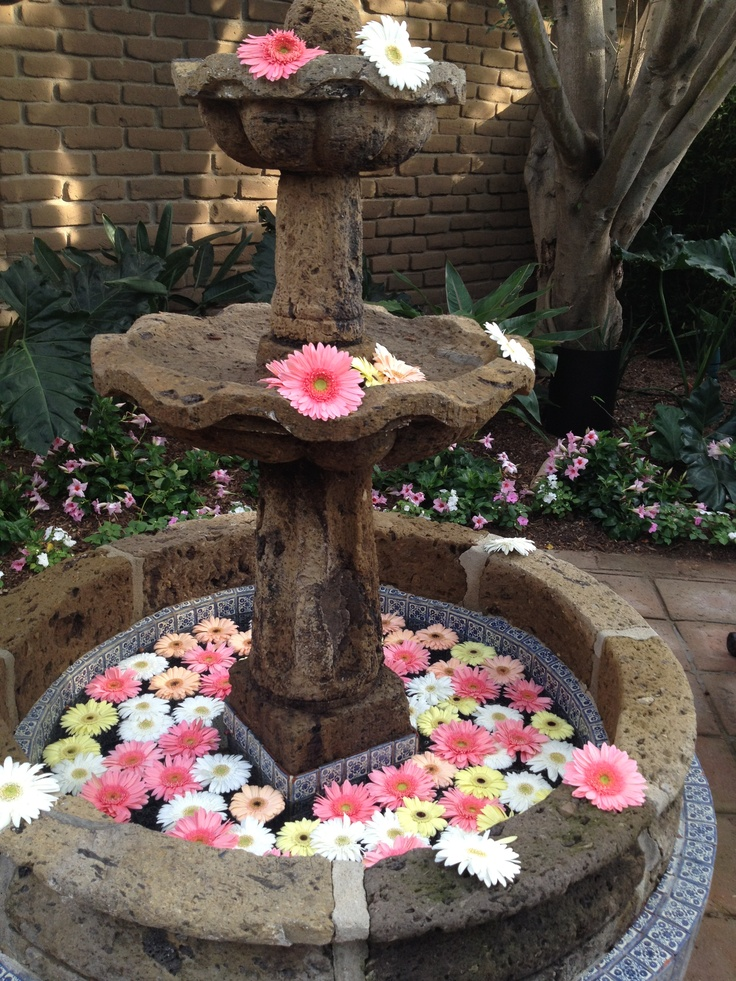 33 Best Images About Floating Flowers In Pools On