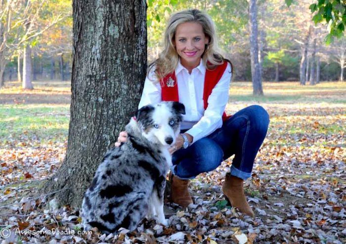 Ladonna Her Affectionate Aussiedoodle Puppies Raised In Arkansas In 2020 Aussiedoodle Puppies Breeders