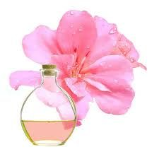 Essential oil of geranium in our soaps!  http://thegardenofsea.blogspot.com/2015/05/essential-oil-of-geranium-pelargonium.html …