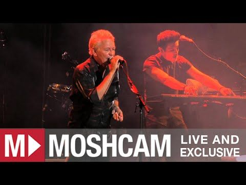 Icehouse - Hey Little Girl   (Live in Sydney) | Moshcam