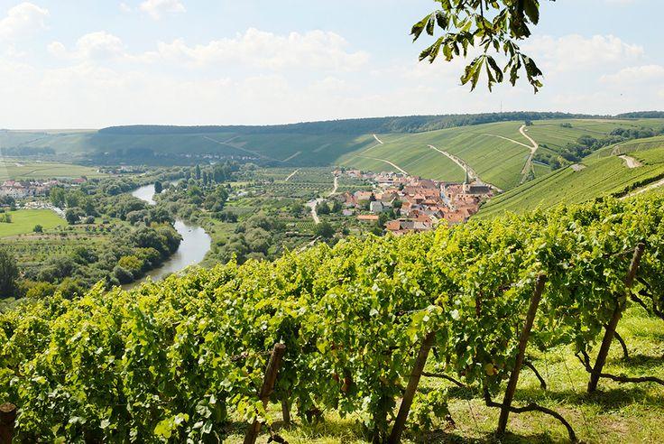 Wein, Weltkultur und Wohlgefühl; das Weinland Franken: www.hikeandbike.de