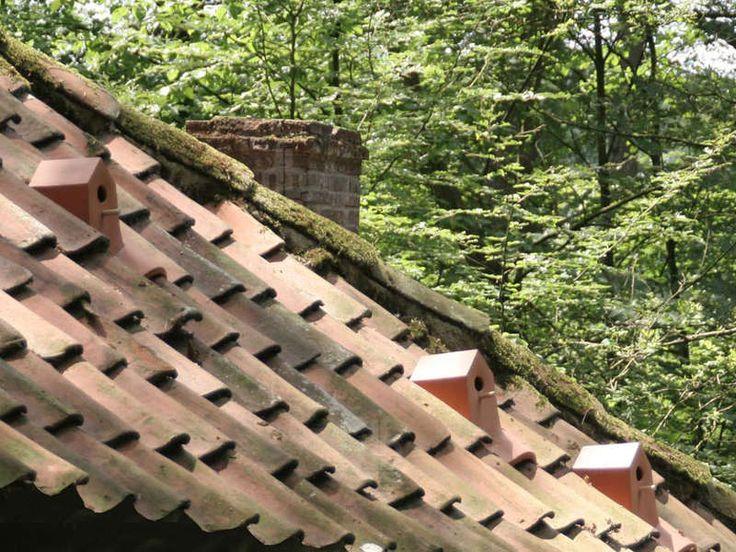 Bird House Shingles - Bird House Tiles by Klass Kuiken Give Birds a Home in Urbanized Areas (GALLERY)