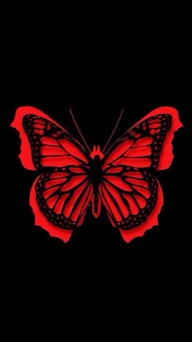 Pin By Angela Patricia On Mariposas Butterfly Wallpaper Backgrounds Butterfly Wallpaper Iphone Butterfly Wallpaper