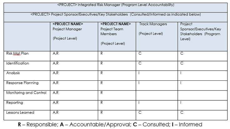 Risk Roles And Responsibilities  Risk Management Plan Template