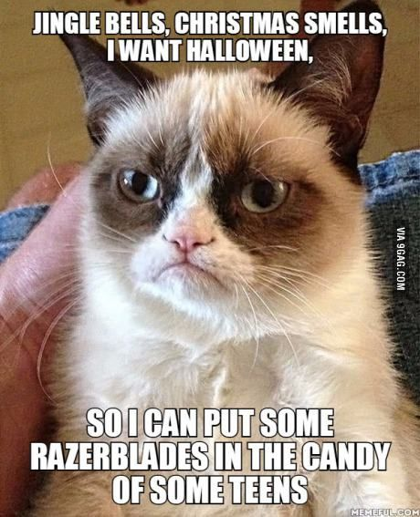 Hardcore grumpy cat loves halloween