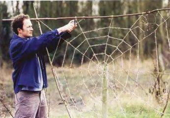 Гигантская паутина для сада - опора вьющихся растений. Обсуждение на LiveInternet - Российский Сервис Онлайн-Дневников
