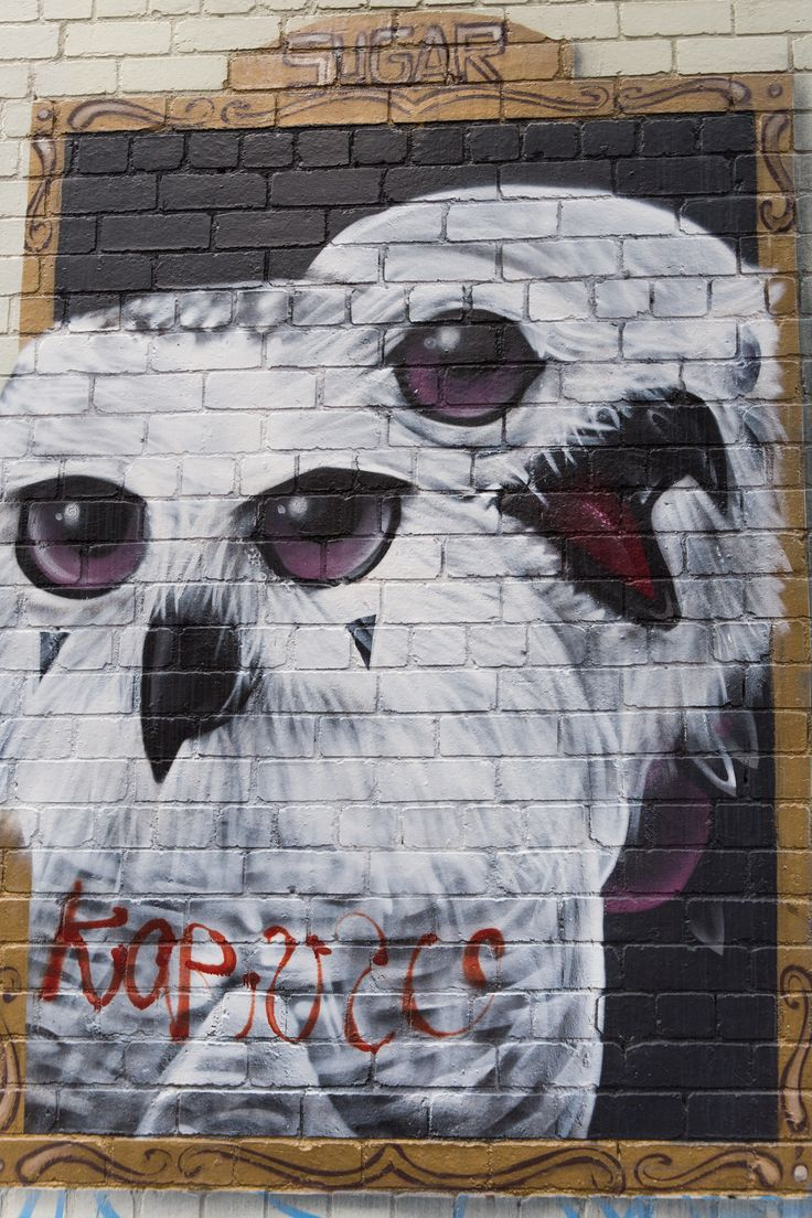 Owls by Sugar at Campbell St, Collingwood #streetart #melbourne