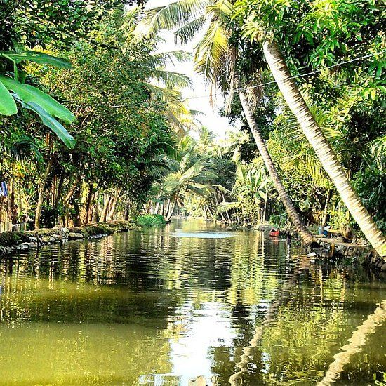 Kerala Places To Visit: 1000+ Images About ϸ�God's Own Country On Pinterest