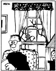 Calvin and Hobbes, Dad feels like he's being watched... hahaha!