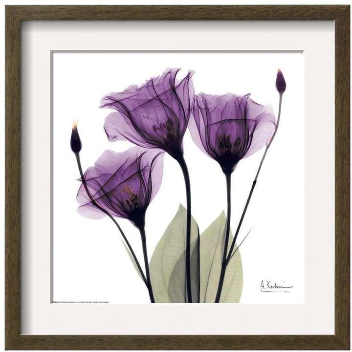 Art.com Royal Purple Gentian Trio Matted Framed Wall Art