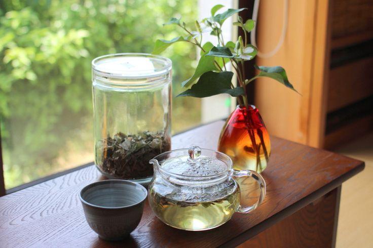 お庭や花壇、畑などの手入れをされている方には、雑草の駆除は結構つらい作業だと思います。中でも生命力旺盛な「どくだみ」は厄介ですよね!でもこのどくだみ、デトックスやダイエット、美肌効果など、美容や健康にとっても嬉しい効能を持つ優秀な植物なんです♪今回はそんなどくだみで作る「どくだみ茶」の効能と作り方、どくだみ化粧水の作り方をご紹介します!
