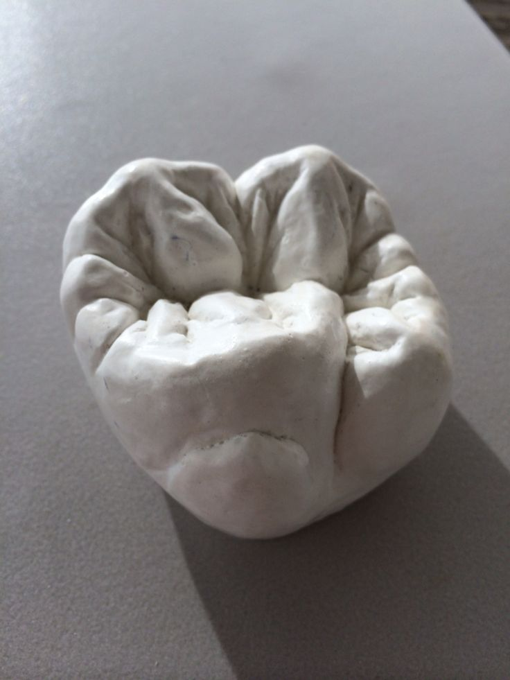 How beautiful is the shape of a human tooth (molar). Www.rechtetanden.nl is gespecialiseerd in het mooi maken van wat nog niet helemaal mooi is aan jouw gebit.