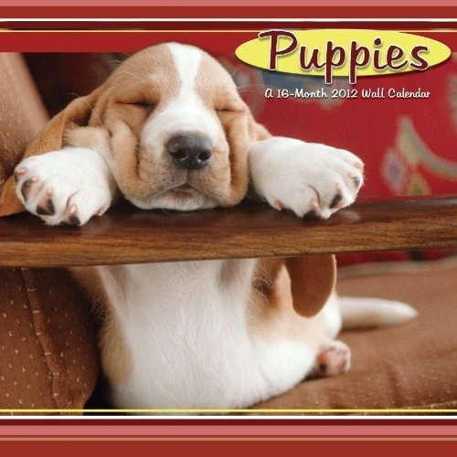 Nudges, yips and wagging tails mean someone s so happy to see you. Man s best friend knows how to melt our hearts and this assortment of puppy images will do no less.