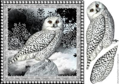 Night Owl Topper on Craftsuprint designed by Chris Harland - A quick card front with owl decoupage - Now available for download!