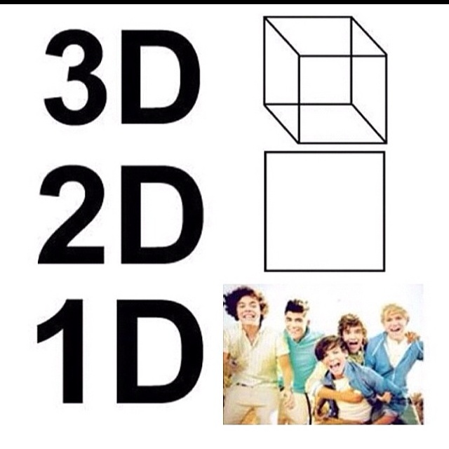 145 best I am a Directioner, forever and always... images on ...