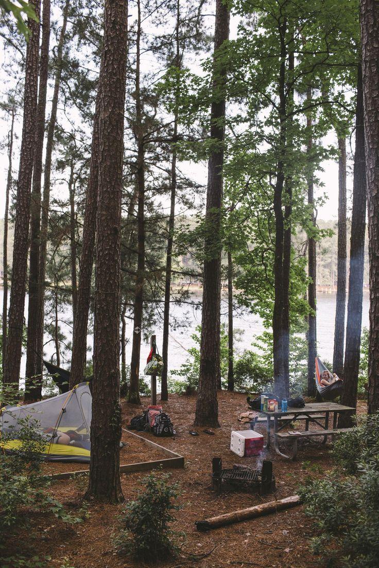 家族でキャンプに出かけたい。子供たちが喜ぶこと間違い無し