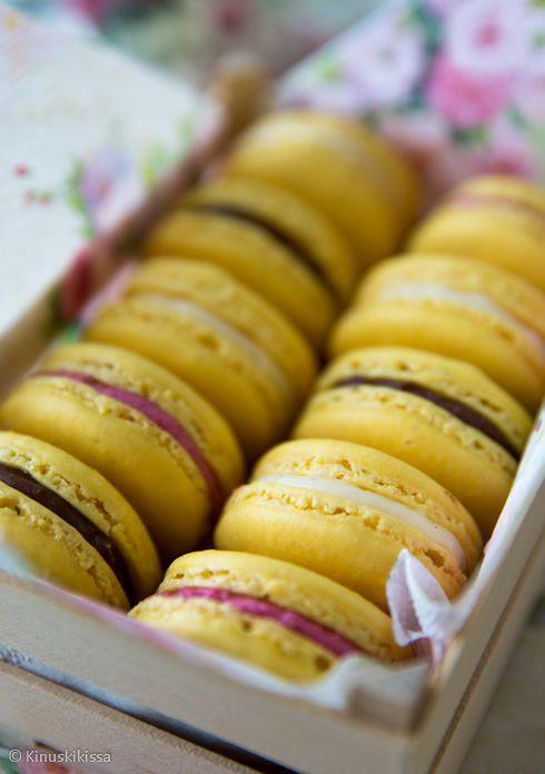 Macaronit kolmella täytteellä | Reseptit | Kinuskikissa