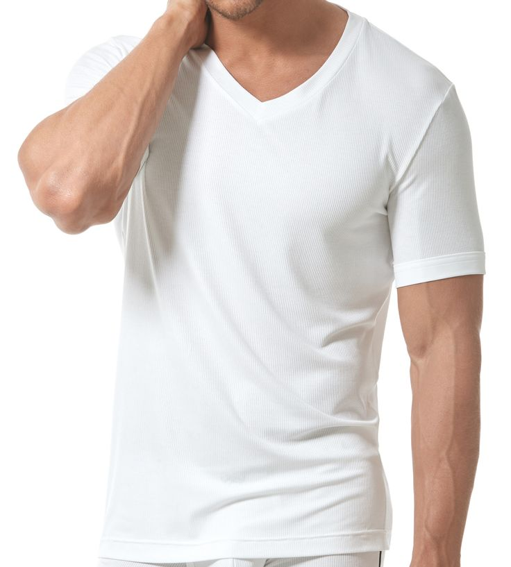 Gregg Homme introduces the MENZ t-shirt, our newest basic fashion group for your every day use. This semi-fitted v-neck t-shirt is made with an ultra soft ribbed modal knit. This styling is for a classic look yet staying elegant and sexy.