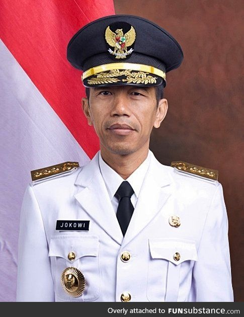 The New President of Indonesia looks like an Asian Obama!