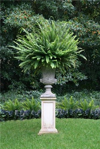 Best 25 Garden urns ideas on Pinterest Urn planters Urn and