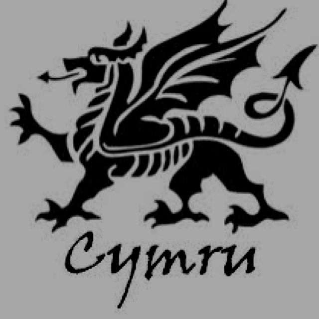 25 Best Wales Welsh Days Ideas Images On Pinterest Wales England