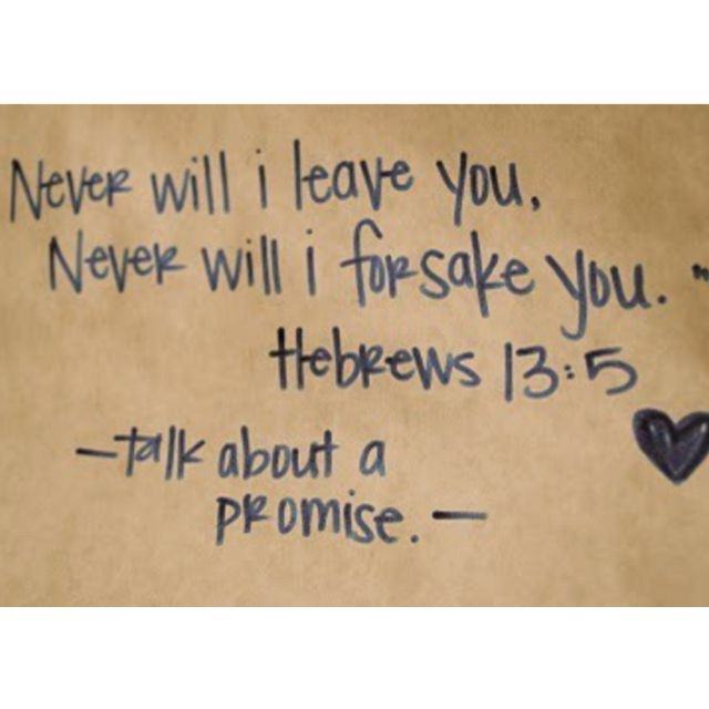 Talk about a promise!Inspiration, Hebrew 13 5, Quotes, Hebrew 135, Faith, God Is, Jesus, Promised, Bible Verses