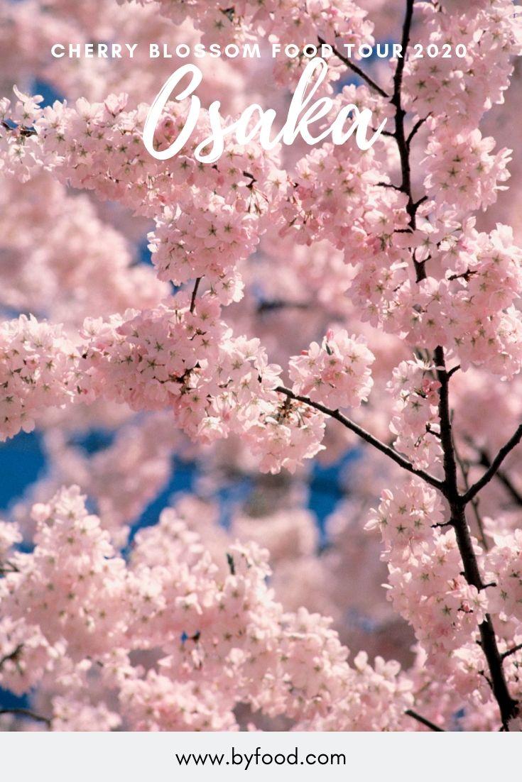 Osaka Cherry Blossom Food Tour 2020 Food Tours Cherry Blossom Seasonal Celebration