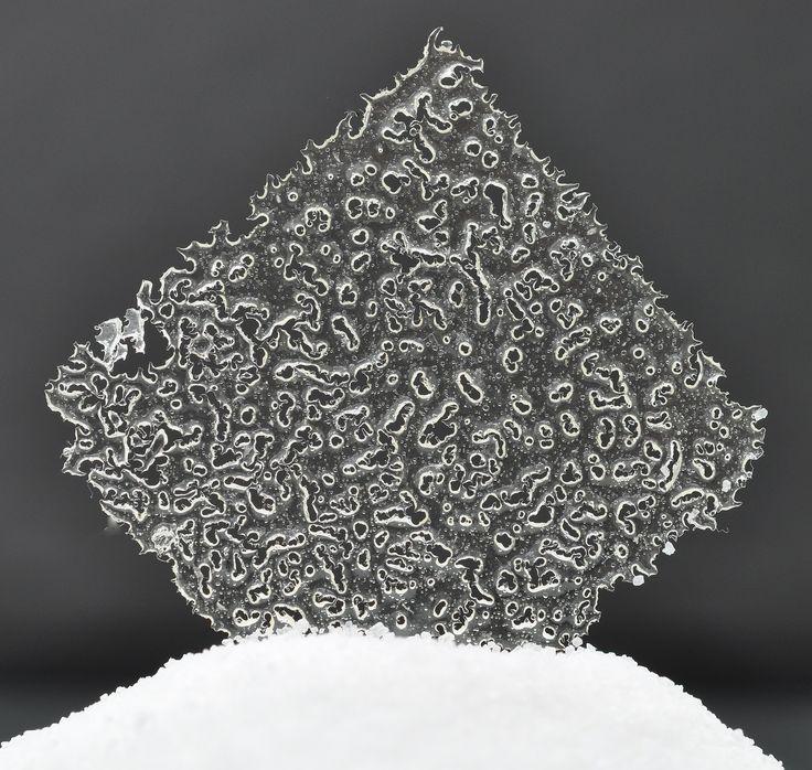 Opaline   Transparent tuiles   Pastry Chef & Author Eddy Van Damme