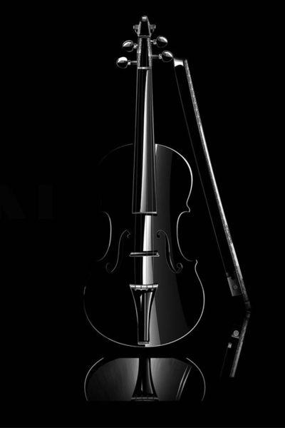 Скрипка «Черная птица» из черного диабаза по эскизам самого Страдивари. Оценена в 1 000 000 фунтов стерлингов.