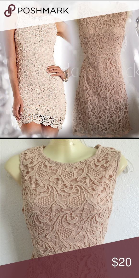 Light brown lace dress Bottom lining. Back zipper. Lace all over. Also available in Medium. Dresses