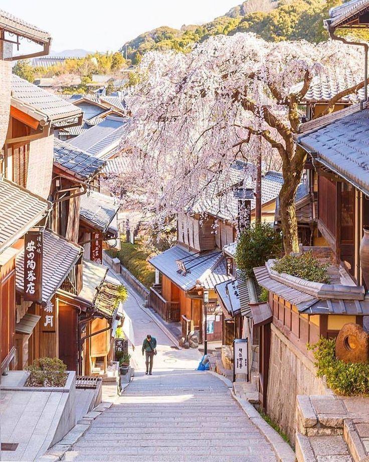 Le printemps japonais (de mars à mai),